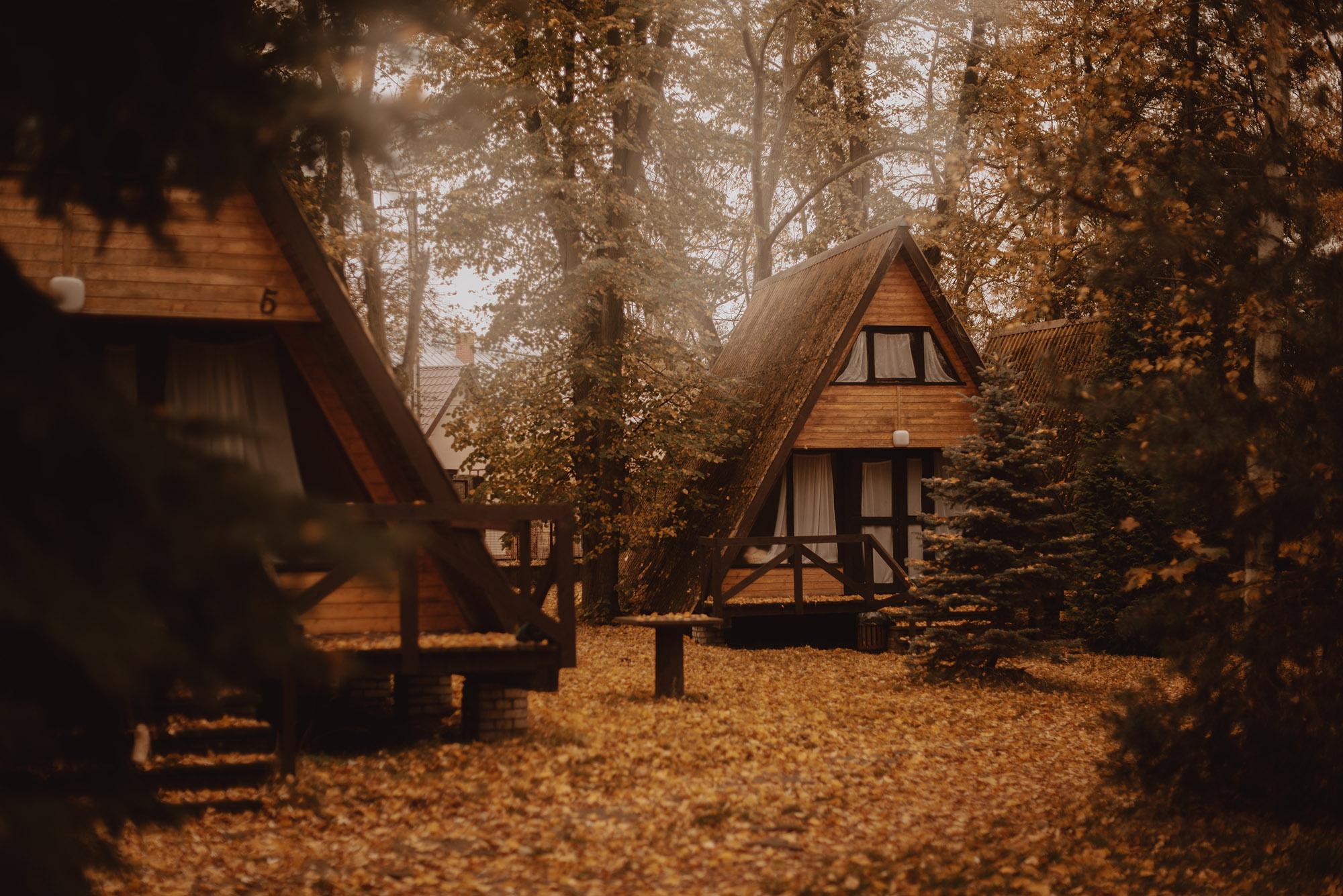 Jesienna sesja narzeczenska00001 - Jesienna sesja narzeczeńska